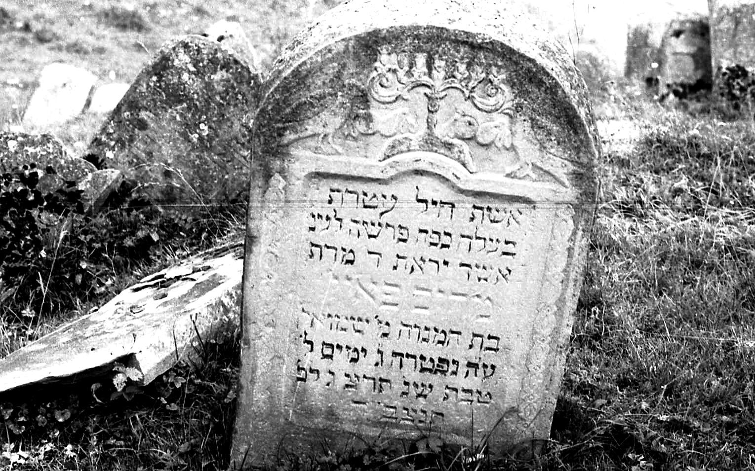 人 差別 ユダヤ
